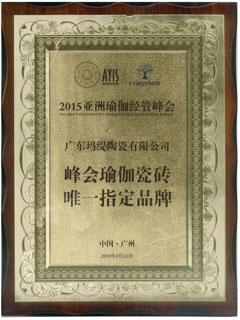 峰会瑜伽瓷砖唯一指定品牌