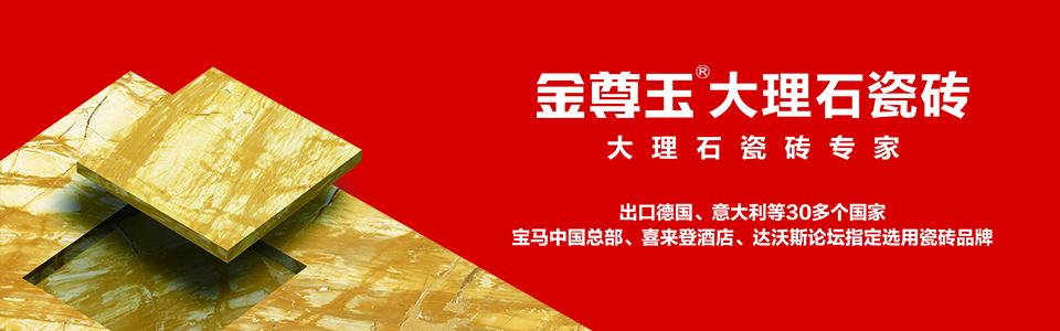 金尊玉大理石瓷砖 形象图