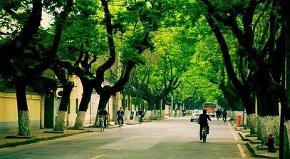 南京,一半是殘酷一半是溫柔 | 小編手記