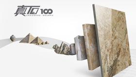 瓷砖十大品牌之法恩莎瓷砖形象图