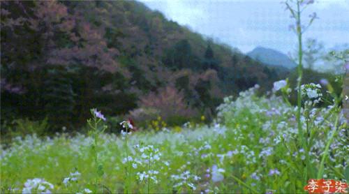 【玛缇案例】成都版「李子柒的后院」,令人向往的生活……