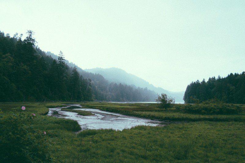 空间设计|穿越希施金的静谧之森